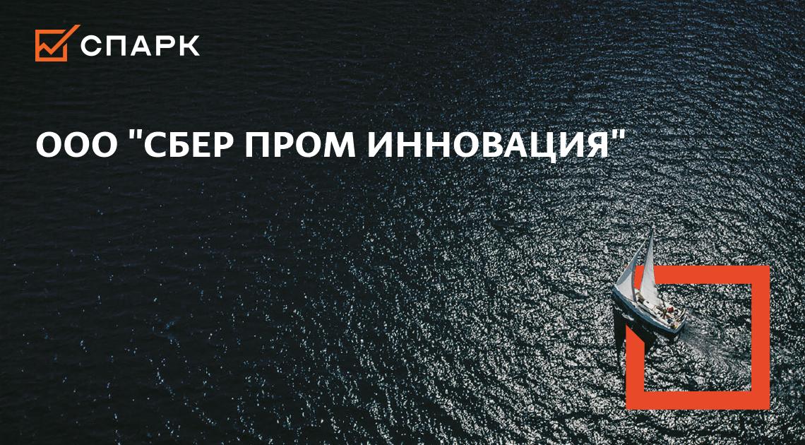 ПРОБЛЕМЫ ООО «СБЕР ПРОМ ИННОВАЦИЯ»